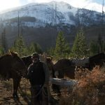 Posing with the Horses and Mules - Yellowstone Horseback Riding Guides