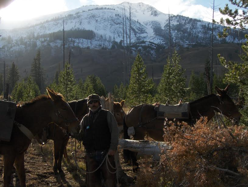 Posing with the Horses and Mules